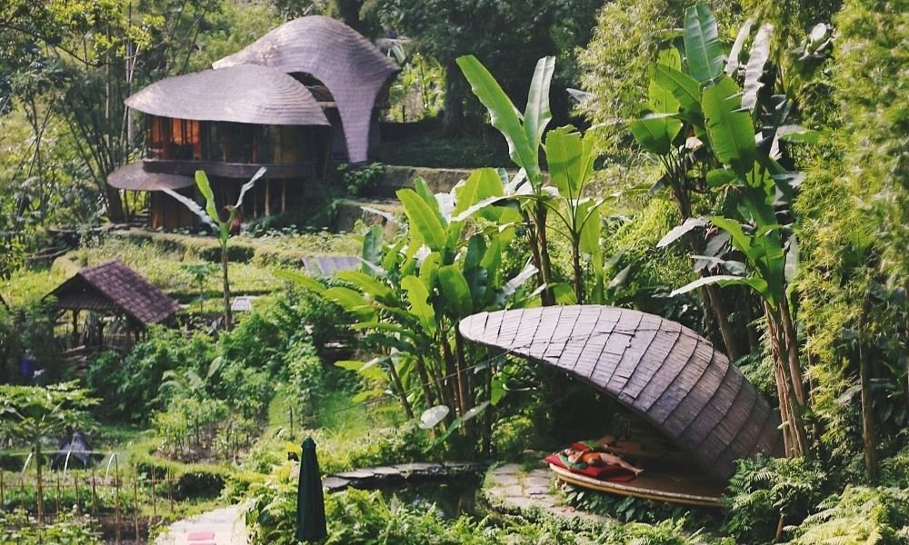 Simple approaches to make your way of life more eco-accommodating